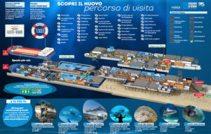 SKETCH_Acquario_di_Genova_MAP_Frog_Adv